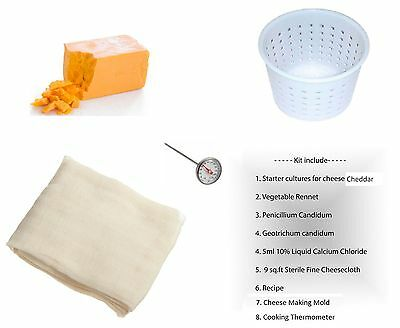 Cheddar Cheese Full Making Kit + Mold + Thermometr New Sealed Free Track