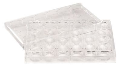 LAB SAFETY SUPPLY 11L795 24 Well Tissue Culture Plate w/Lid,PK50