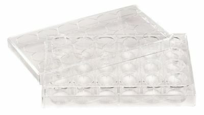 48 Well Tissue Culture Plate w/Lid,PK50