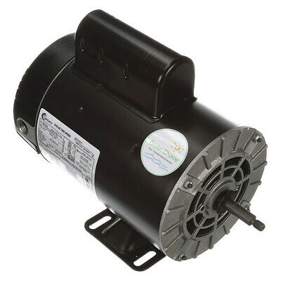 Pool Motor,2, 1/4 HP,3450/1725 RPM,230V CENTURY B2234