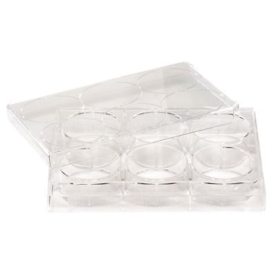 LAB SAFETY SUPPLY 11L793 6 Well Tissue Culture Plate w/Lid,PK50