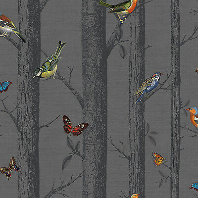 Colourful Birds on Black Tree Branches Wallpaper - Charcoal Background -10m Roll