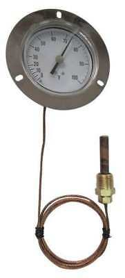 12U619 Analog Panel Mt Thermometer, 0 to 100F
