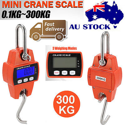 Portable Industrial Mini Digital LCD Crane Scale Heavy 300kg Electronic Hook