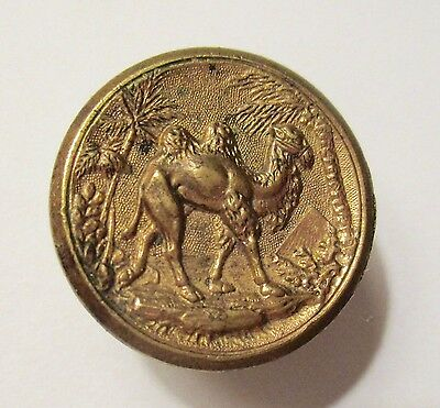 Antique Victorian Metal Picture Button Camel & Pyramid