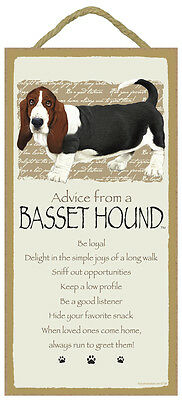 """Advice from a Basset Hound Sign Plaque Dog 5"""" x 10""""  Pet Lovers Gift"""