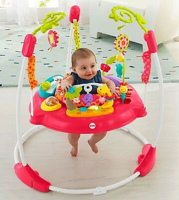 HTF FISHER-PRICE PINK PETALS JUMPEROO Bouncer Jumper Activity Toy Play Gym GIRL