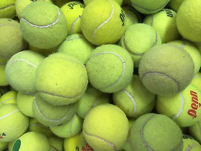 100 Used Tennis Balls Ideal for Dog Toys