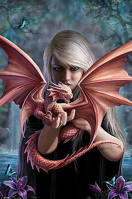Anne Stoke Dragon Butterfly POSTER (61x91cm) Picture Print New Art
