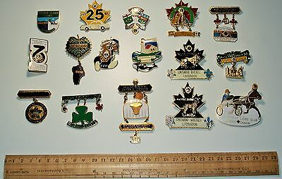 Lot of Lions Pins Lot of 16 Pins various vintage Large & Heavy