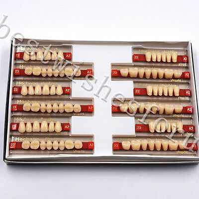 VITA A2 - 23 Dental Oral 3 Set of 84*1 Acrylic Resin Denture Teeth Upper Lower