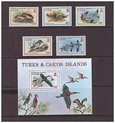 Turks & Caicos Islands 1980 Exotic Birds Nature set  sheet  MNH mint  stamps
