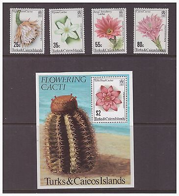 Turks & Caicos Islands 1981 Flowers  Cacti  Plants set sheet  MNH mint