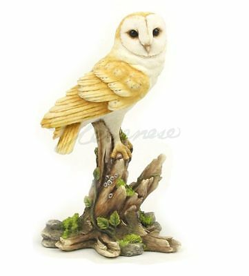 Barn Owl Sculpture On Branch Statue Figure - GIFT BOXED