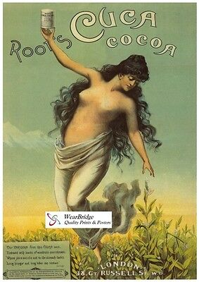 Vintage British Advertising Poster: ROOT'S CUCA COCOA: A3 Reprint
