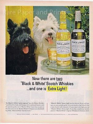 1964 Black and White Scotch Whiskey Vintage 1960s Illustrated Print Ad