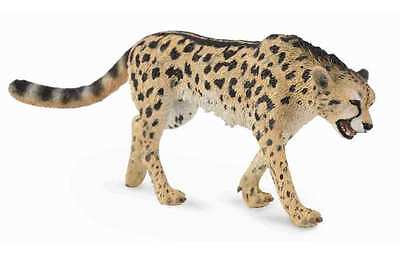 CollectA Wildlife King Cheetah Toy Figure - Authentic Hand Painted Model