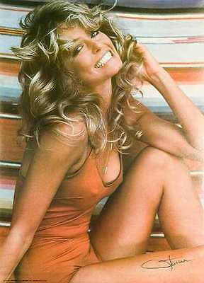 Original Farrah Fawcett Poster 1976 Mint Bathing Suit out of Pro Arts Display