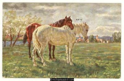 Horses: pair in field, artist signed