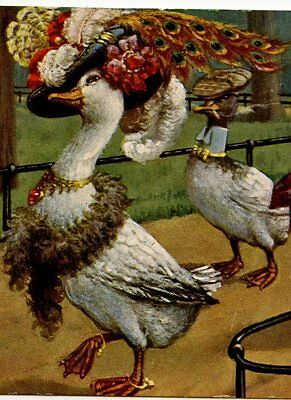 Arthur Thiele.jolie Cane Au Grand Chapeau.canard. Hat.female Duck.mode.fashion.