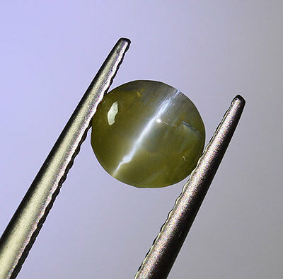 "UNTREATED Ceylon Chrysoberyl Catseye 1.48 Ct. "" Nice COLOUR"" (00543)"