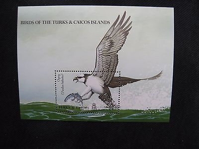 Turks & Caicos Islands: 1990 Birds Mini Sheet Unmounted Mint