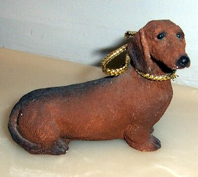Dachshund With Gold Ribbon ~ So Handsome!