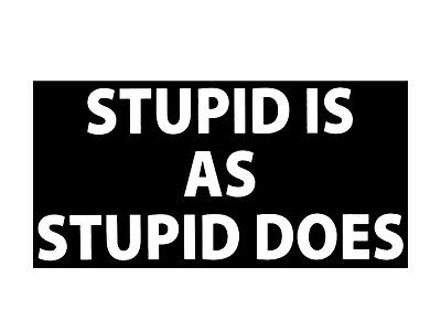 Wholesale Lot of 6 Stupid Is As Stupid Does Decal Bumper Sticker