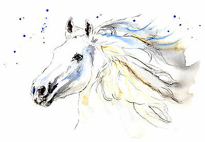 WHITE HORSE Original Watercolour Painting / (not a print) by TL