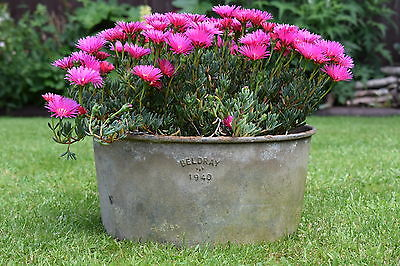 Vintage Garden Planter tin bath old trough watering can tub plant pot herb tools