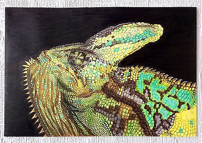 Reptile Lizard Art Original Wildlife Signed pen & Ink Drawing animal A3 Portrait