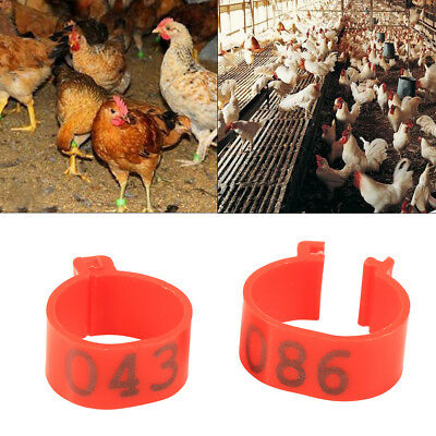 100X 16mm Clip On Leg Band Rings for Chickens, Ducks, Hens, Poultry, Large Fowl