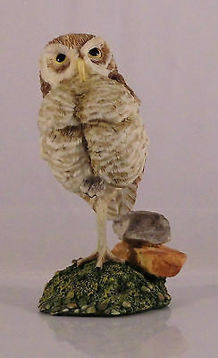 Franklin Mint World Of Owls Burrowing Owl Eule Figur #2