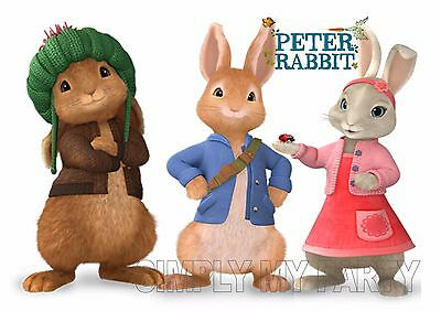 Iron On Transfer / Sticker -  Peter Rabbit And Friends - T-Shirt Transfer Book W