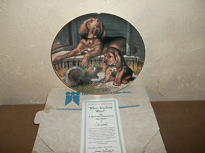 Sporting Generation Dog Plate ~~Boxed With Certificate~~