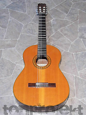 vintage CHINCHILLA by MEINL C-120 spanish 4/4 Classical Guitar Classic Guitar