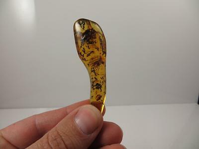 S.V.F - Polished Copal Amber with insect inclusions.   Madagascar