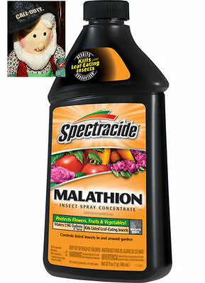 Malathion Concentrate Garden Insect Spray 32 fl. oz  Insect Bug Killer Control