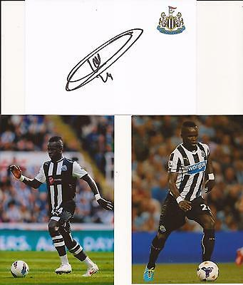 Newcastle * Cheick Tiote Signed 6X4 Crested Whte Card+2 Free Unsigned Photos+Coa
