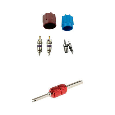 7 Pieces Car A/C System Caps Covers & Valve Cores with Red Remover Tools Kit