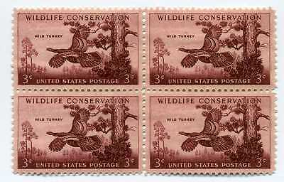 Wildlife Conservation: Wild Turkey 61 Yr Old Vintage Mint Stamp Block from 1956