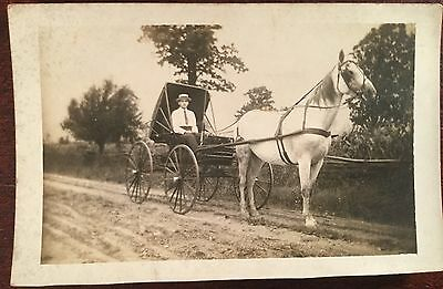 1910's Antique Real Photo Postcard RPPC White Horse Carriage Buggy Man PC