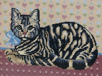Vintage Mid Century Hand Made Cat Needlepoint Embroidery Glass Framed