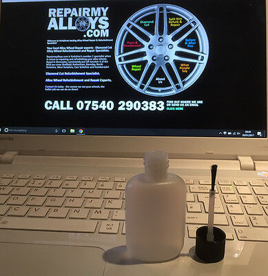 Ford Fiesta/Focus/Mondeo/Kuga Silver Alloy Wheel Repair Touch up Paint, 30ml