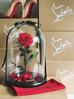 Real Rose That Last 1 Year, Beauty and The Beast Enchanted Rose, 2017 Hot Sale