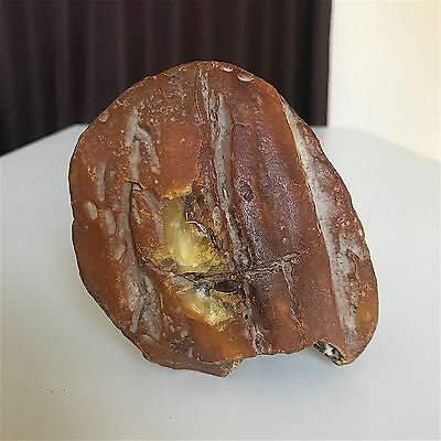Old Yellow color Baltic Amber stone (247.3 g.) 153E