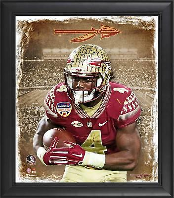 """Dalvin Cook Florida State Seminoles Framed 15"""" x 17"""" Playmaker Collage"""