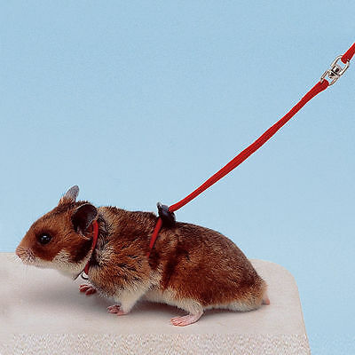 Ferplast Hamster Small Pet Harness and Lead Set Red