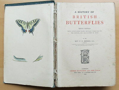 A History of British Butterflies: F.O.Morris.1904. 9th. Edition. Hardback.