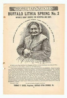 Antique Original 1889 FULL PAGE Print Ad / Buffalo Lithia Spring #2 - Colored